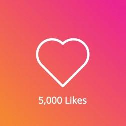 5,000 Instagram Likes Pasif logo
